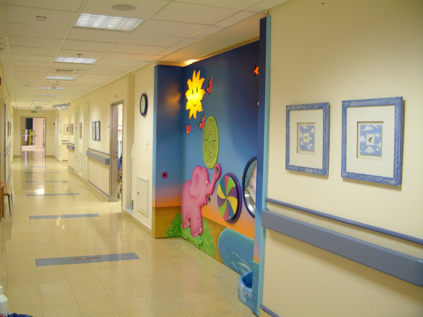 The edmond and lily safra childrens hospital
