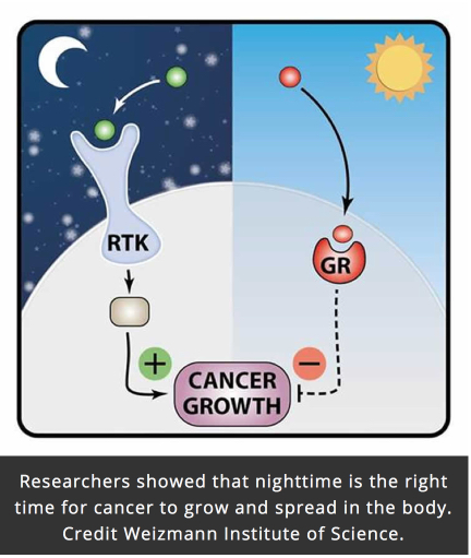 To treat cancer need during sleep